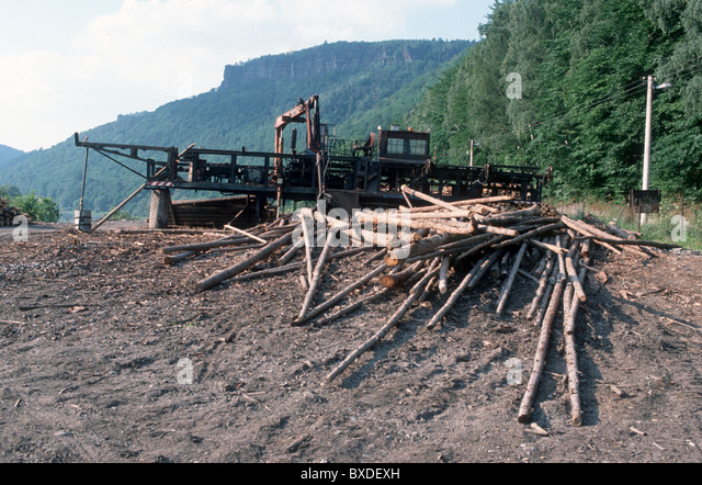 logging in bohemia near german border stock bilder - Bordre Bad Bilder