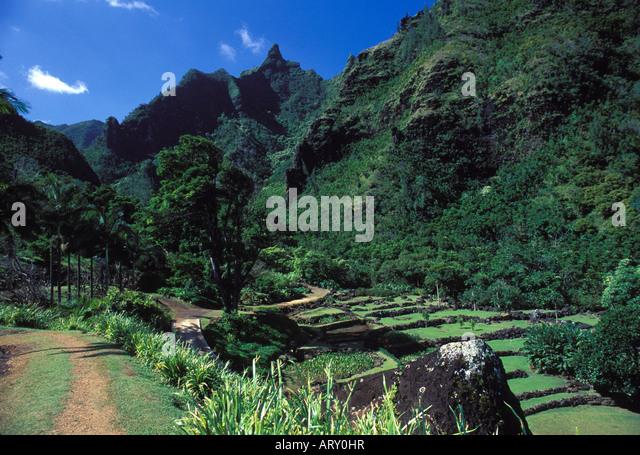 National Tropical Botanical Ga Stock Photos National Tropical Botanical Ga Stock Images Alamy