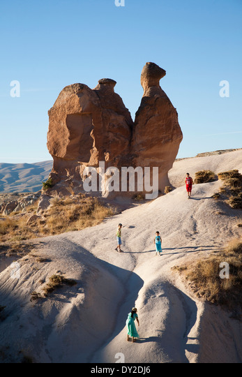 Camel Shaped Stock Photos & Camel Shaped Stock Images - Alamy