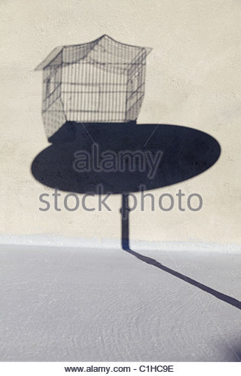 Shadow Of Empty Birdcage On A Little Round Table   Stock Image