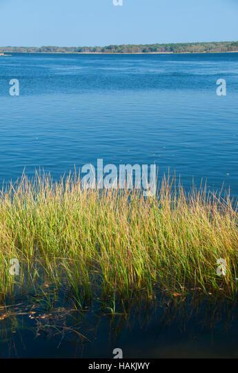 Palmer Spring Rhode Island