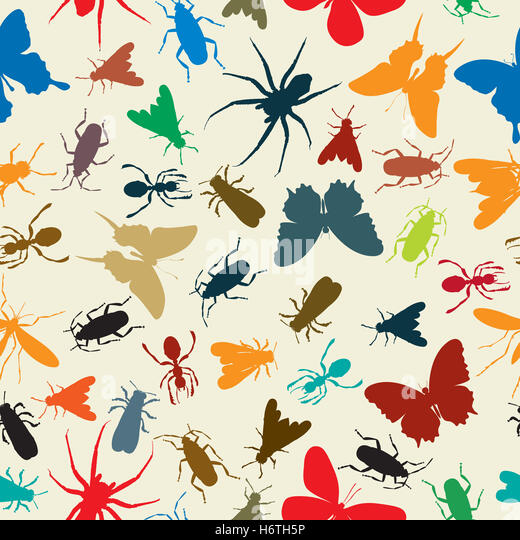 Do butterflies sweat like people and animals?