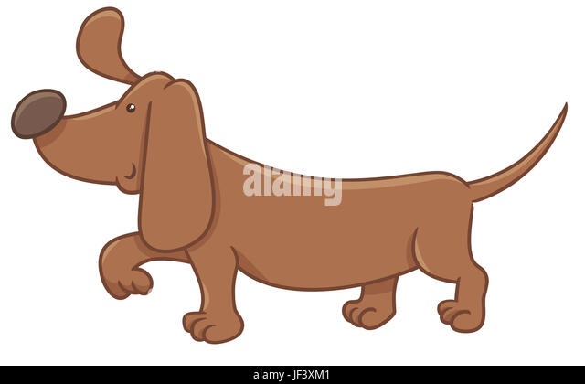 Dachshund Dog Drawing Stock Photos Amp Dachshund Dog Drawing