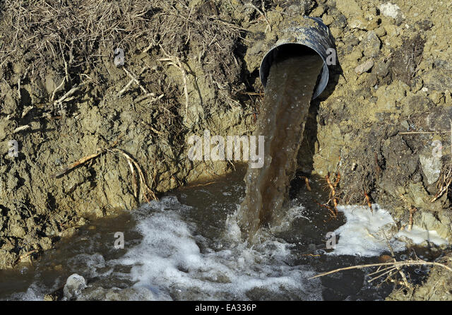 Sewer pipe stock photos sewer pipe stock images alamy sewer pipe with sewage stock image sciox Images