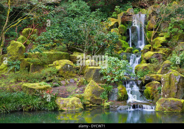 Asian Garden Waterfall Flowing Into A Still Pond Surrounded By Moss Covered  Rocks, Trees,