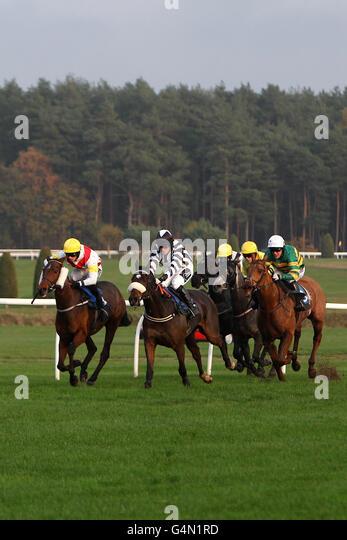 horse racing market rasen