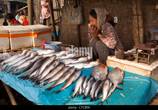 Women selling fish india stock photos women selling fish for River fish market