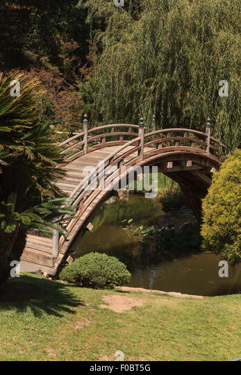 Water lilies and japanese bridge stock photos water for Japanese garden pond bridge