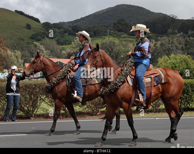Horseback Riding Waimea Big Island