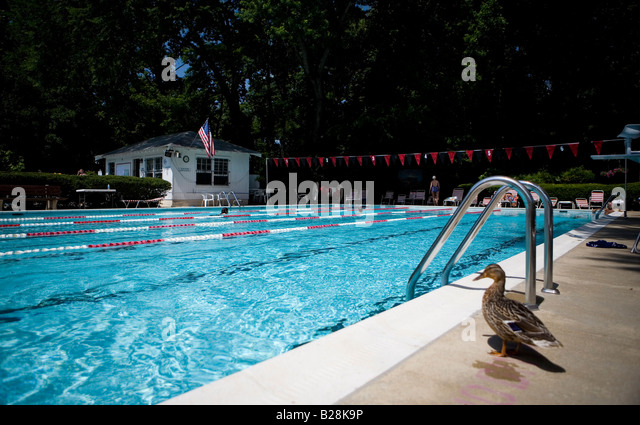Local swimming pool stock photos local swimming pool for Local swimming pools