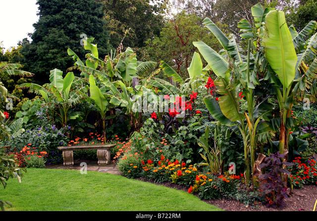 Tropical Garden Border Stock Photos Tropical Garden