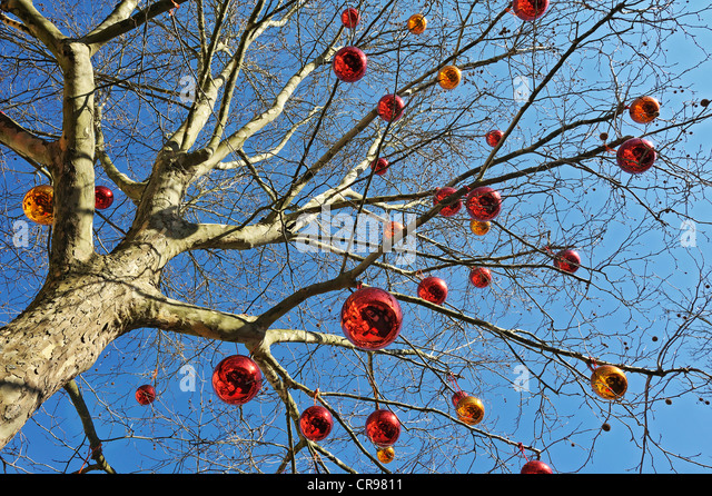 Christmas Baubles Germany : Leaf less stock photos images alamy