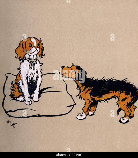 Illustration By Cecil Aldin, The Mongrel Puppy Book. Scamp The Mongrel  Encounters A Pedigree
