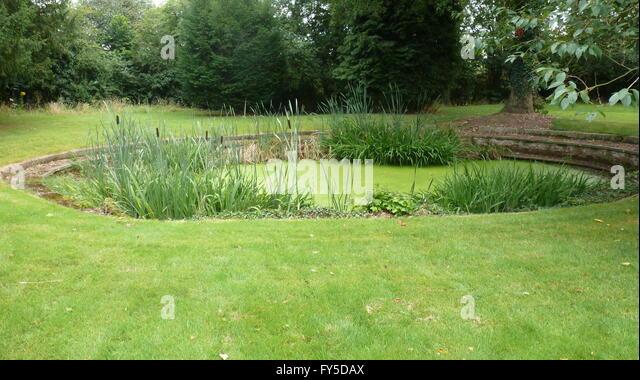 Ornamental pond and garden stock photos ornamental pond for Ornamental garden ponds