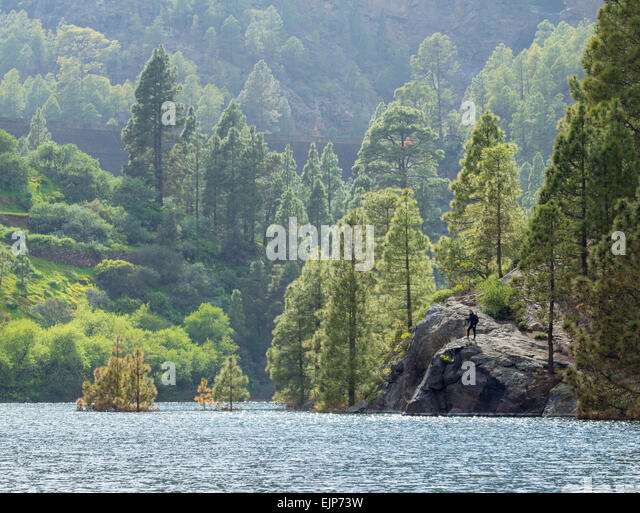 Presa stock photos presa stock images alamy - Standing canarias ...