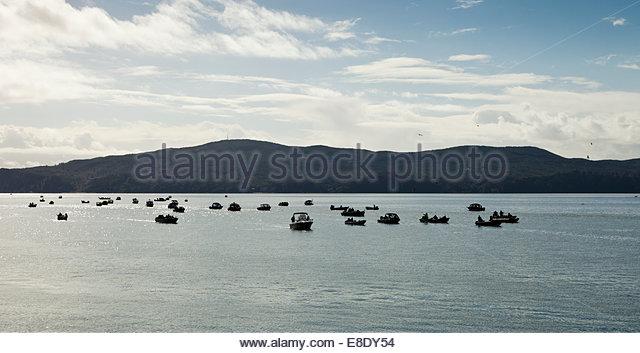 Tillamook bay stock photos tillamook bay stock images for Tillamook bay fishing
