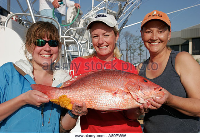 Zekes stock photos zekes stock images alamy for Zeke s fish
