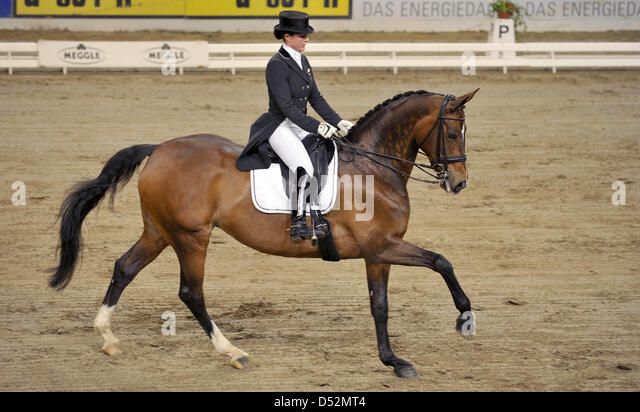 Equestrienne Stock Photos & Equestrienne Stock Images