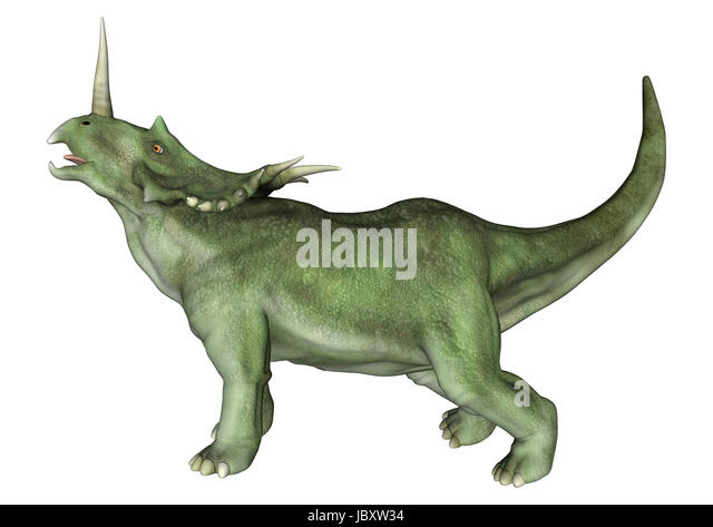 styracosaurus museum stock photos styracosaurus museum stock images alamy. Black Bedroom Furniture Sets. Home Design Ideas