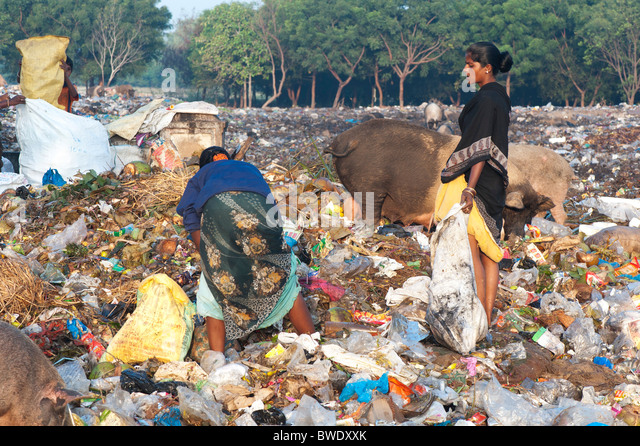 Poor Indian women collecting pickings from a rubbish tip surrounded by ...