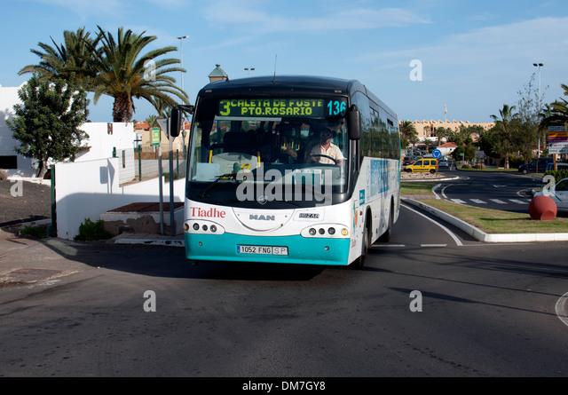 THIADHE Fuerteventura Tiadhe-bus-caleta-de-fuste-fuerteventura-canary-islands-spain-dm7gy8