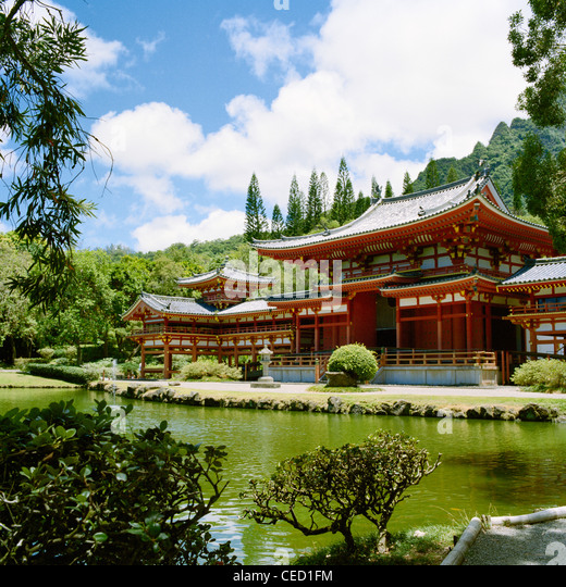 buddhist single men in haleiwa In our buddhist chat rooms, you can hang out with dozens of charming single members, so if one doesn't catch your fancy, the conversation doesn't die – you can pick up the flirting with someone else.