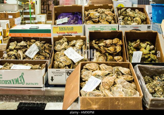 Hunts point stock photos hunts point stock images alamy for Fish market bronx