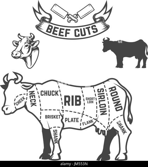 diagram of cow stock photos  u0026 diagram of cow stock images