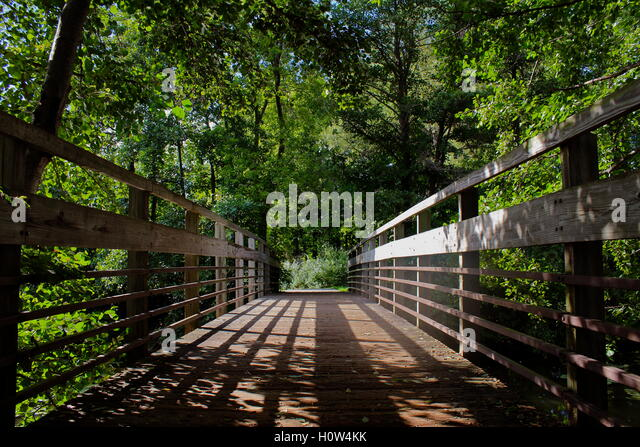 Bridge over a river into the trees. - Stock Image & Tunnel Of Trees Michigan Stock Photos u0026 Tunnel Of Trees Michigan ...