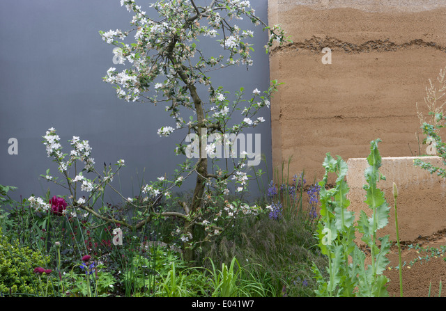 rhs chelsea flower show 2013 100th centenary stock image