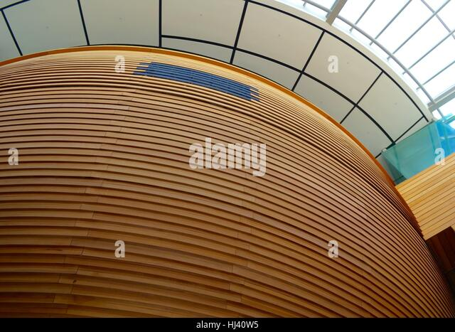 wood slat wallpaper architectural curved wooden wall skylights panel divider