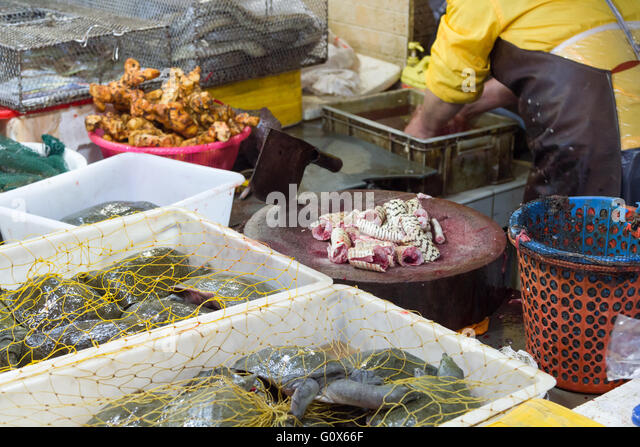 Vendor selling fresh seafood street stock photos vendor for Oriental fish market