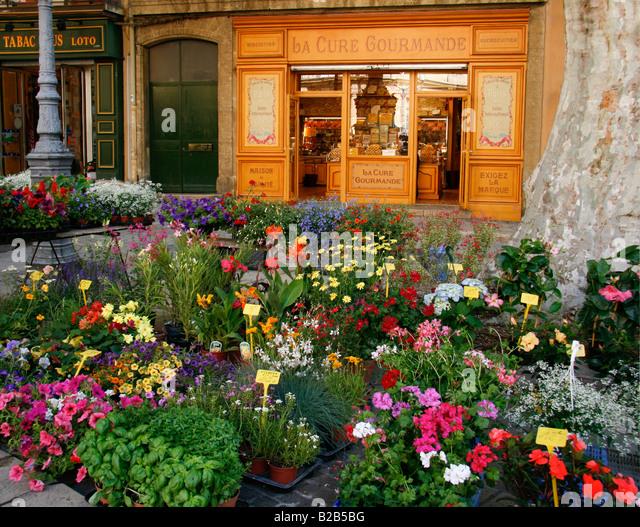 plant cul Aix-en-Provence