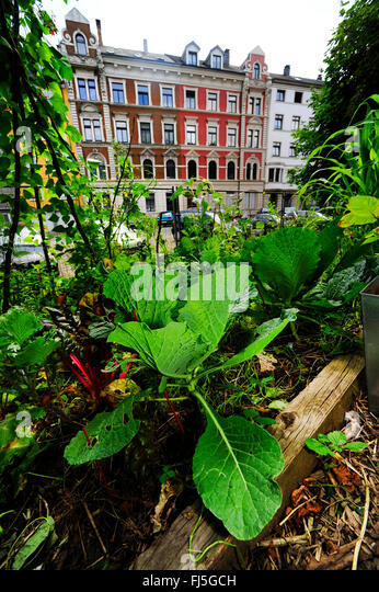 guerilla gardening stock photos guerilla gardening stock images alamy. Black Bedroom Furniture Sets. Home Design Ideas