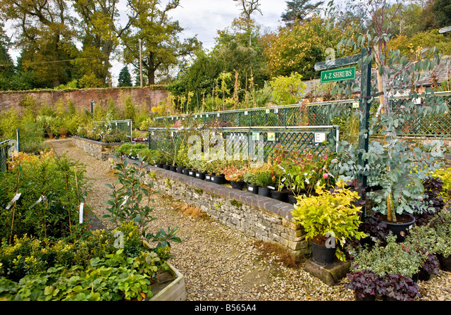 Unusual Plants Arboretum Stock Photos  Plants Arboretum Stock Images  Alamy With Exquisite Batsford Arboretum Garden Centre  Stock Image With Divine Coffee Shop Covent Garden Also Garden Cane Toppers In Addition Oxford Gardens Primary School And Gardening Websites For Beginners As Well As Led Garden Lights Additionally Garden Party Lanterns From Alamycom With   Exquisite Plants Arboretum Stock Photos  Plants Arboretum Stock Images  Alamy With Divine Batsford Arboretum Garden Centre  Stock Image And Unusual Coffee Shop Covent Garden Also Garden Cane Toppers In Addition Oxford Gardens Primary School From Alamycom