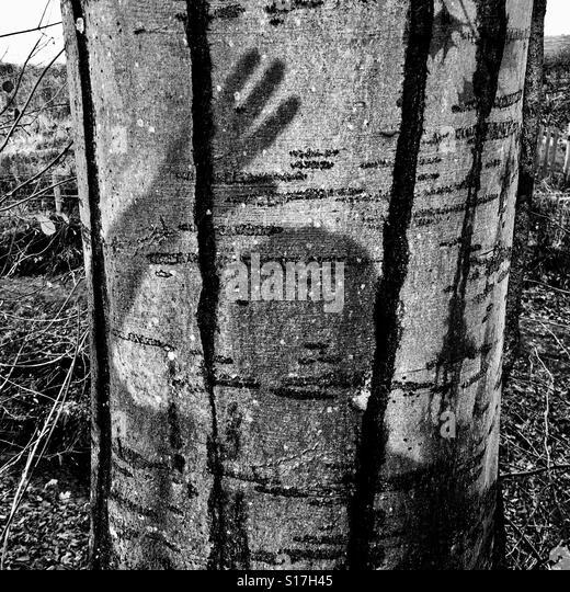 buddhist single men in westhampton Batak bark books (pustaha) [augury books of batak medicine men] (1)  [single leaf from euchologion] (1)  [westhampton farm account book] (1.