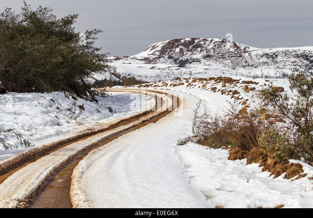 road path tracks snow - photo #2