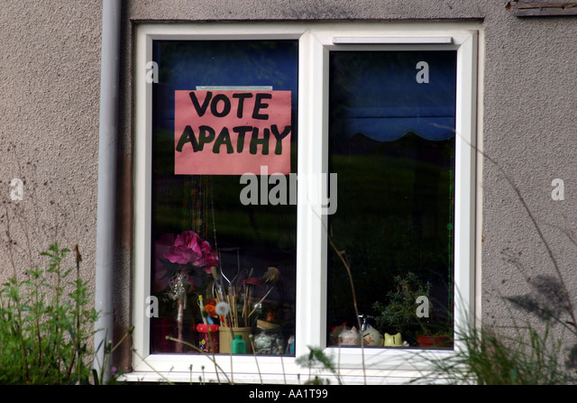 "voter apathy essay The survey on ""south african voter participation in elections"" was conducted by  the socio- economic  to better understand the reasons for voting apathy o."