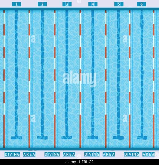 swimming pool top view flat pictogram olympic swimming pool deep bath lanes top view flat