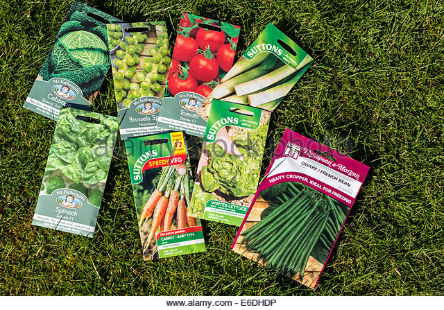 A Selection Of Vegetable Seed Packets   Stock Image