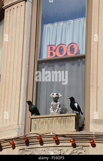 halloween decorations park slope brooklyn boo crows skeleton dog orange lights window stock image