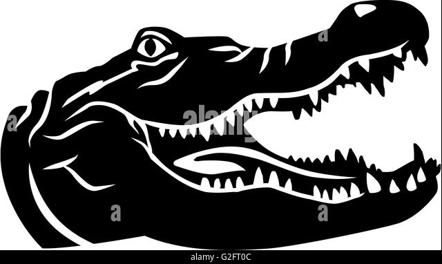 alligator logo vector black and white stock photos images alamy