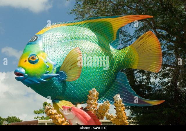 Depicting fish stock photos depicting fish stock images for Florida tropical fish