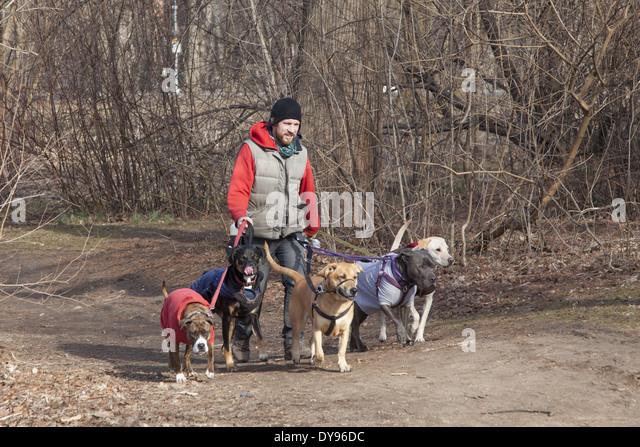 Seaton Trail Dog Park