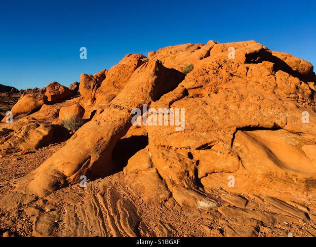 elephant-rock-trail-valley-of-fire-state