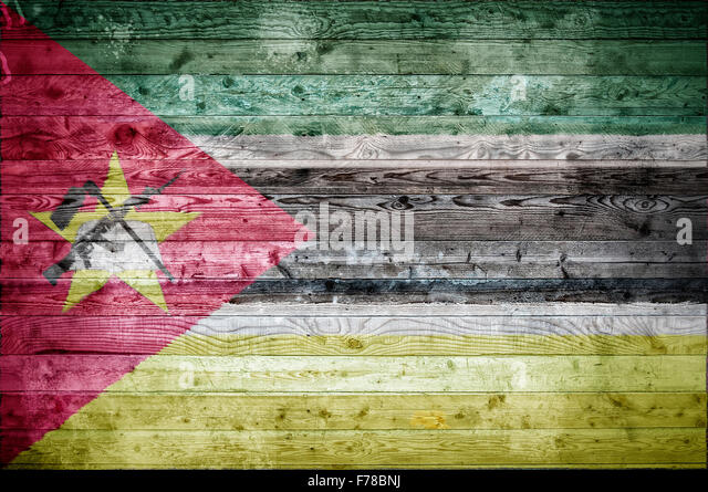 the background of the country of mozambique I mozambique's recent history ii country profile iii mozambique's legal  system 1 political system 11 executive branch 111 the president 112 the .