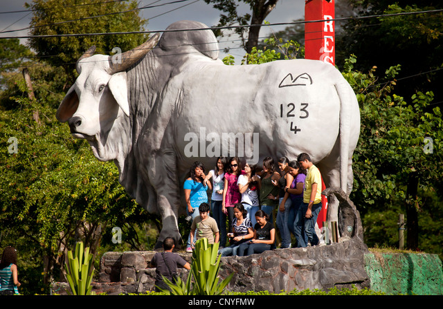 group of young ticos posing in front of a giant advertising cow costa rica