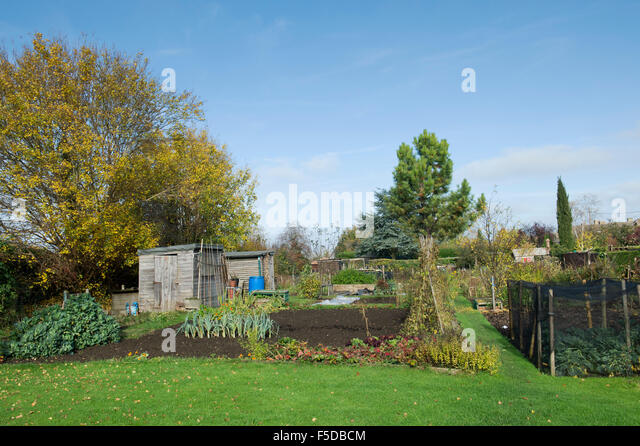 Garden Sheds Gloucester garden sheds on allotments stock photos & garden sheds on