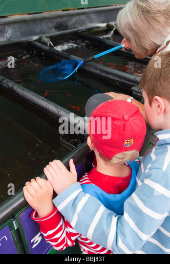 Marvelous Assistant In Uk Garden Centre Stock Photos  Assistant In Uk  With Exquisite Two Children Choosing Some Pet Fish To Buy At A Uk Pet Shop With The Store With Alluring Landscape Gardeners Durham Also Nandos Piccadilly Gardens In Addition Lotus Gardens Clinic And Train Times Welwyn Garden City To Kings Cross As Well As Evergreen Garden Flags Additionally Palm Gardens Turkey From Alamycom With   Alluring Assistant In Uk Garden Centre Stock Photos  Assistant In Uk  With Marvelous Train Times Welwyn Garden City To Kings Cross As Well As Evergreen Garden Flags Additionally Palm Gardens Turkey And Exquisite Two Children Choosing Some Pet Fish To Buy At A Uk Pet Shop With The Store Via Alamycom