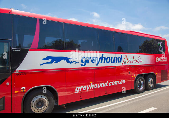 Greyhound bus bookings australia - Online Discounts